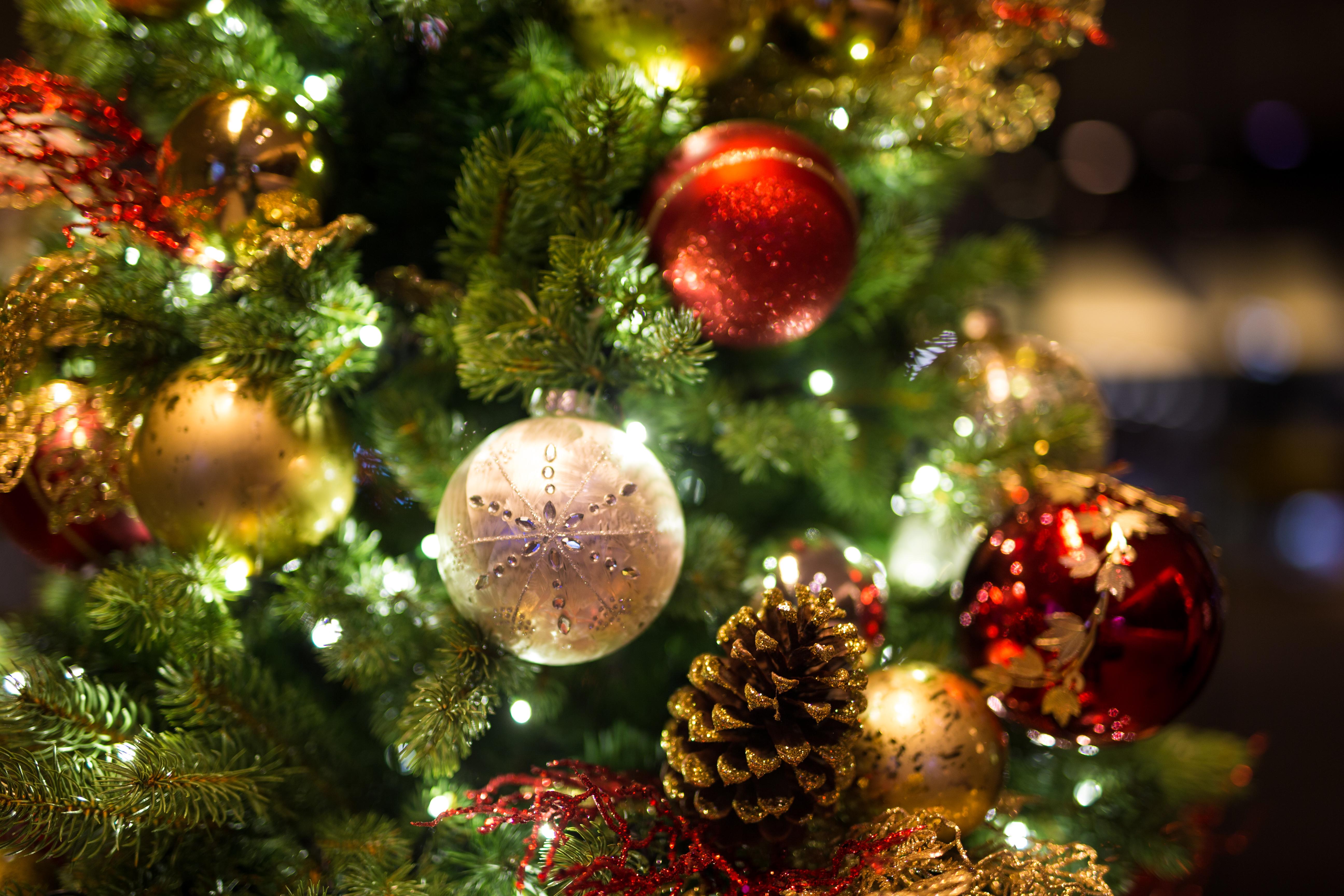 Storslått Forskere advarer mot kunstige juletrær IQ-36