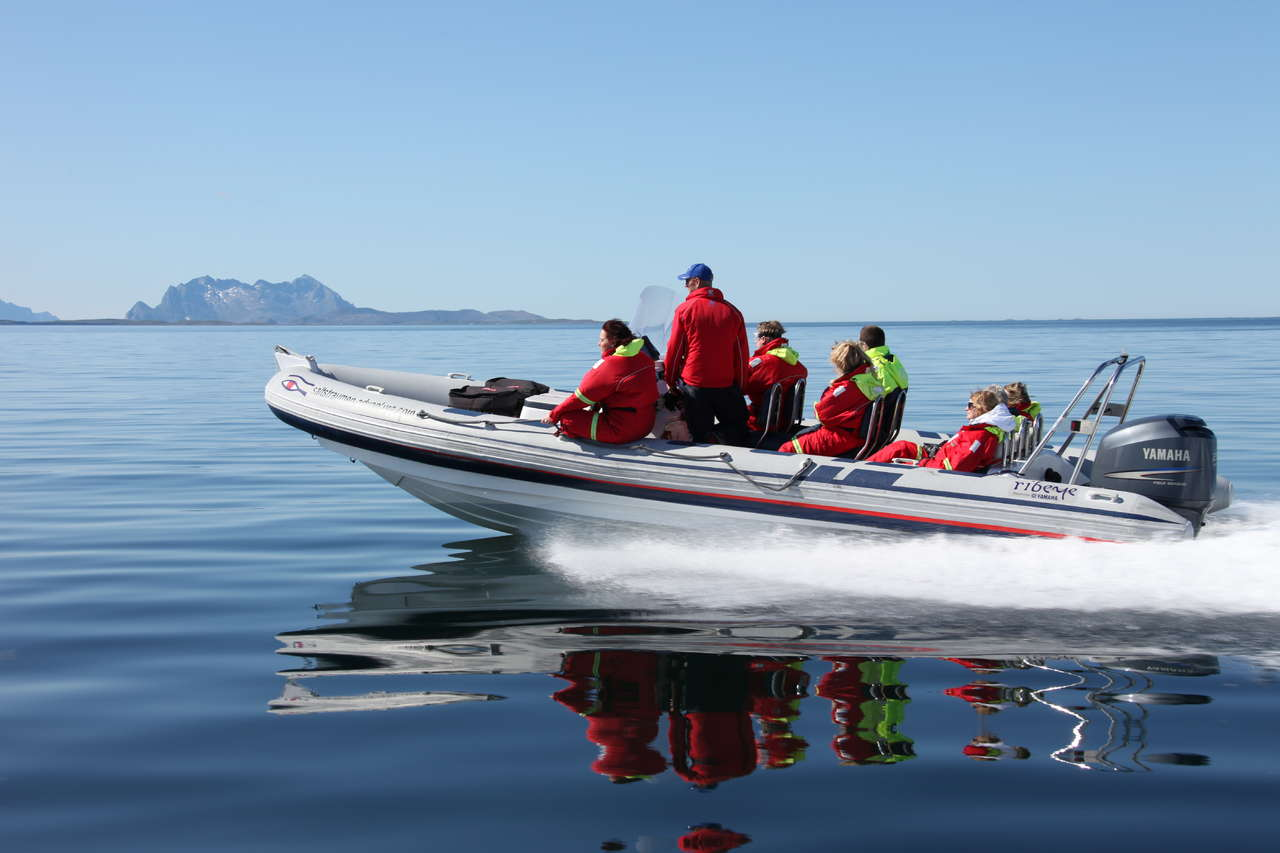 A classic adventure in Bodø: RIB/sea rafting in Saltstraumen.